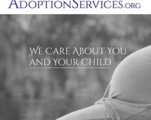Concept AdoptionServices.com ProBono