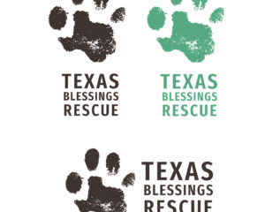 Texas Blessings Branding Project